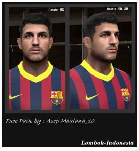 PES 2014 Fabregas Face